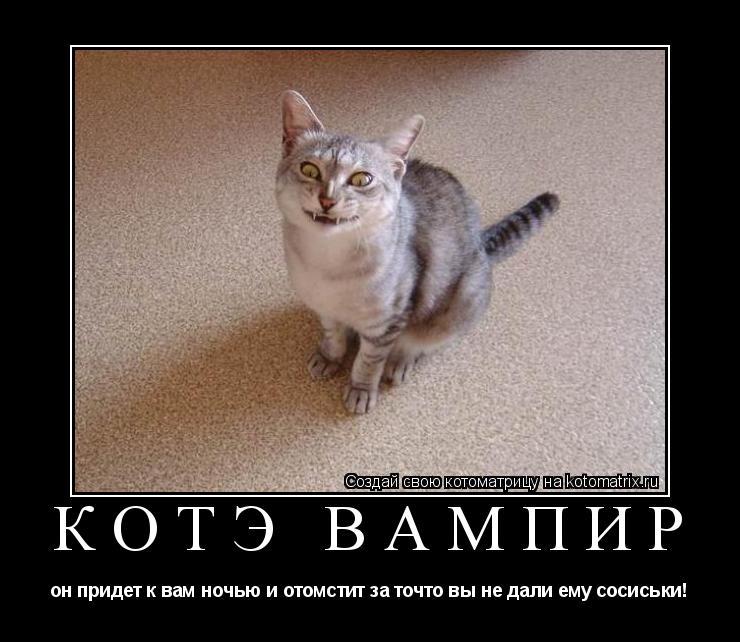 Котоматрица: КОТЭ ВАМПИР он придет к вам ночью и отомстит за точто вы не дали ему сосиськи!