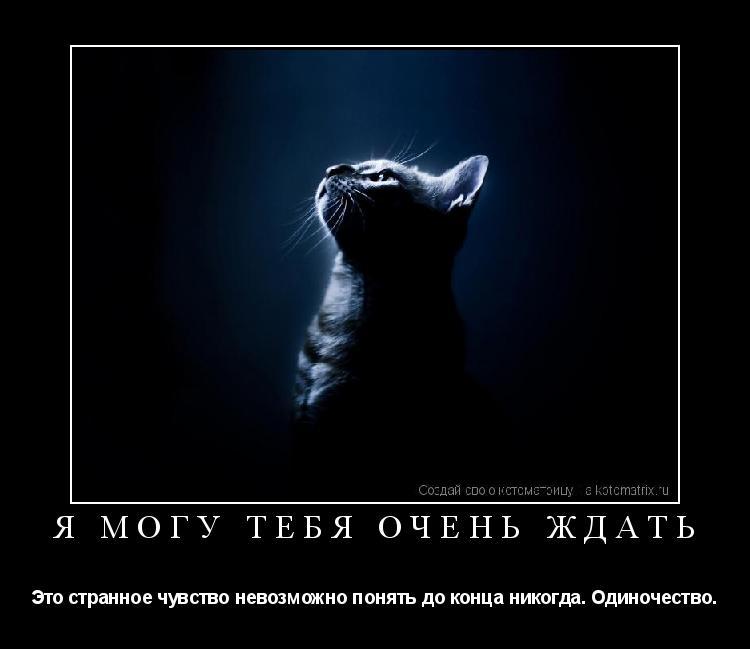 Котоматрица: Я могу тебя очень ждать Это странное чувство невозможно понять до конца никогда… Одиночество…