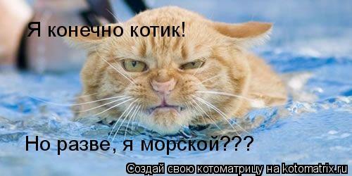 Котоматрица: Я конечно котик! Но разве, я морской???