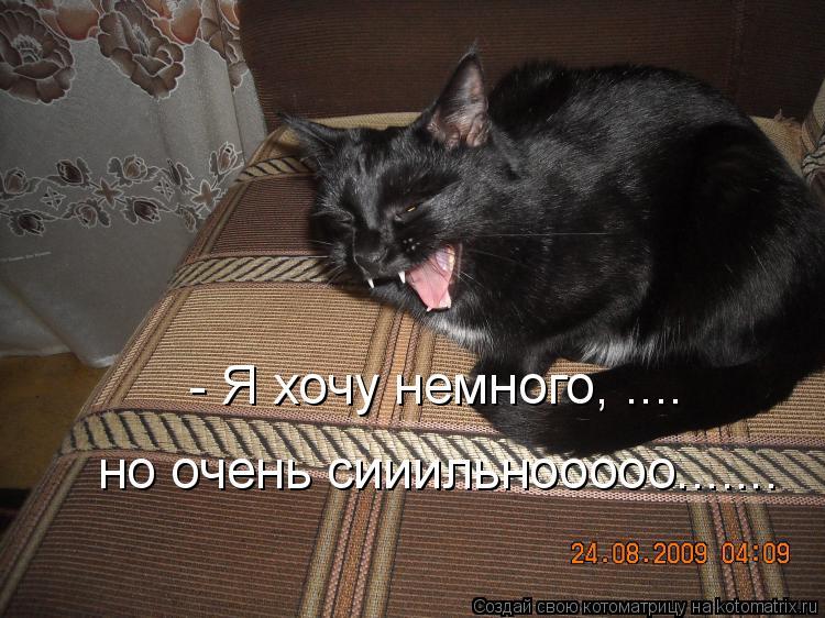 Котоматрица: - Я хочу немного, .... но очень сииильнооооо.......