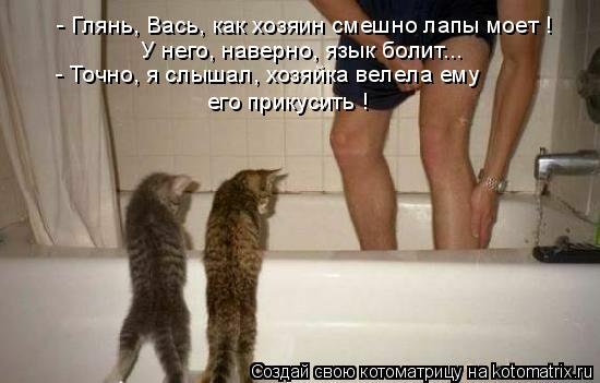 - Глянь, Вась, как хозяин смешно лапы моет ! У него, наверно, язык бол