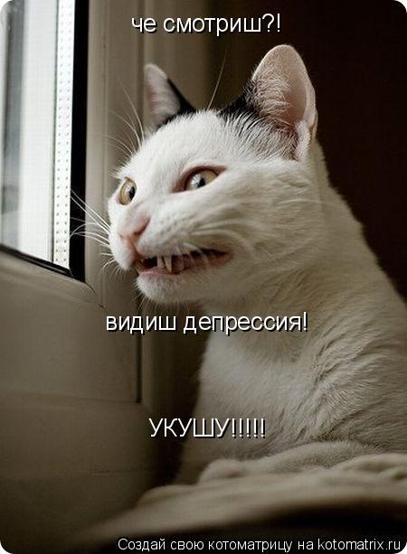 Котоматрица: че смотриш?! видиш депрессия! УКУШУ!!!!!
