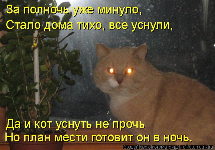 Котоматрица: За полночь уже минуло, Но план мести готовит он в ночь. Да и кот уснуть не прочь Стало дома тихо, все уснули,