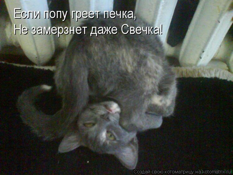 Котоматрица: Если попу греет печка, Не замерзнет даже Свечка!