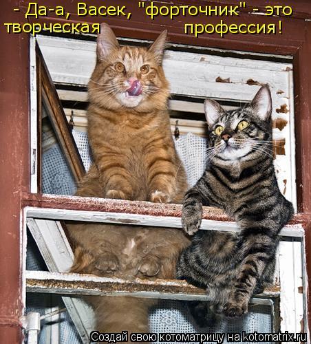 """Котоматрица - творческая профессия! - Да-а, Васек, """"форточник"""" - это"""