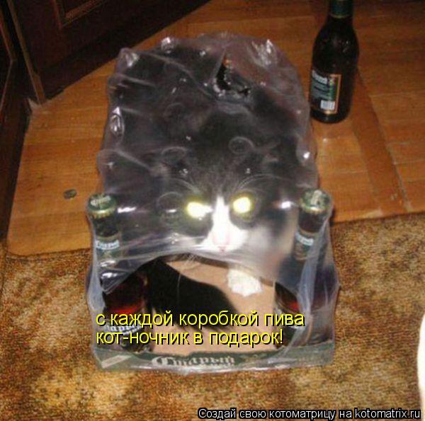 Котоматрица: с каждой коробкой пива  кот-ночник в подарок!