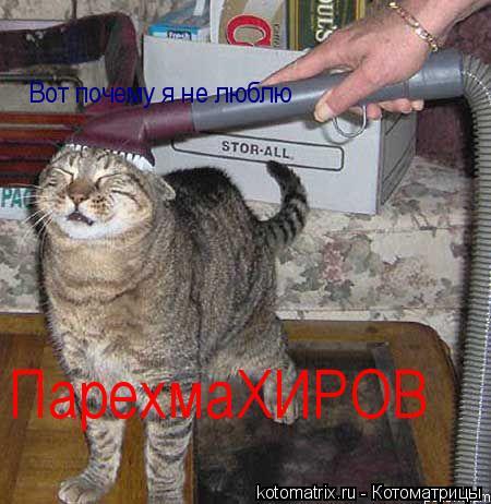 Котоматрица: Вот почему я не люблю ПарехмаХИРОВ