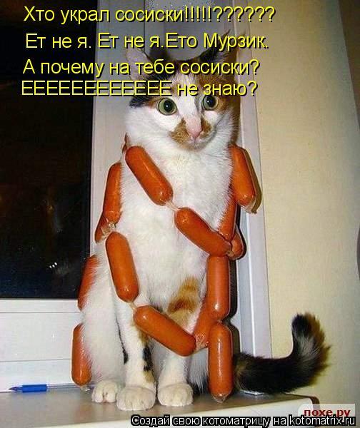 Котоматрица: Хто украл сосиски!!!!!?????? Ет не я. Ет не я.Ето Мурзик. А почему на тебе сосиски? ЕЕЕЕЕЕЕЕЕЕЕЕ не знаю?