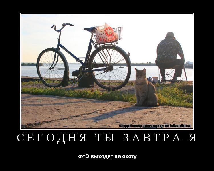 Котоматрица: сегодня ты завтра я котЭ выходят на охоту