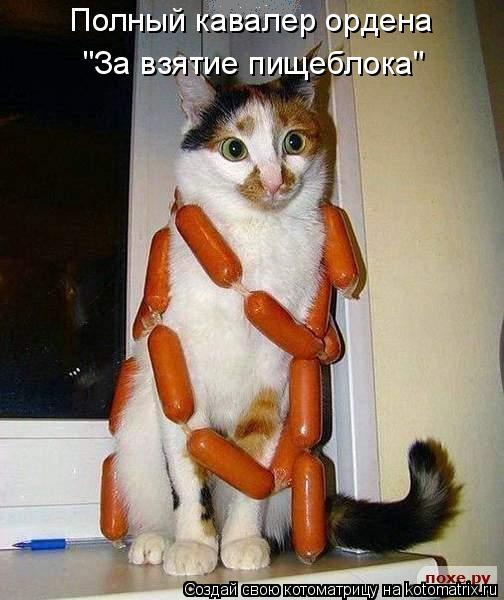 """Полный кавалер ордена """"За взятие пищеблока"""""""