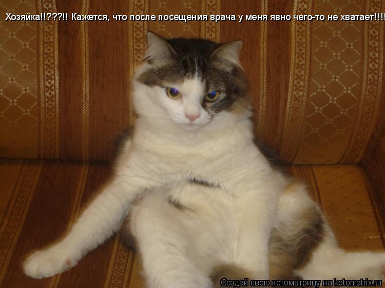 Котоматрица: Хозяйка!!???!! Кажется, что после посещения врача у меня явно чего-то не хватает!!!!!!