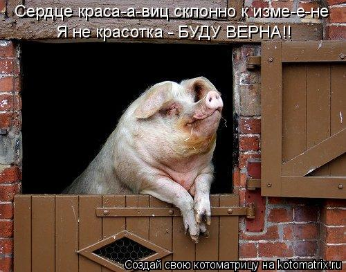 Котоматрица: Сердце краса-а-виц склонно к изме-е-не Я не красотка - БУДУ ВЕРНА!!