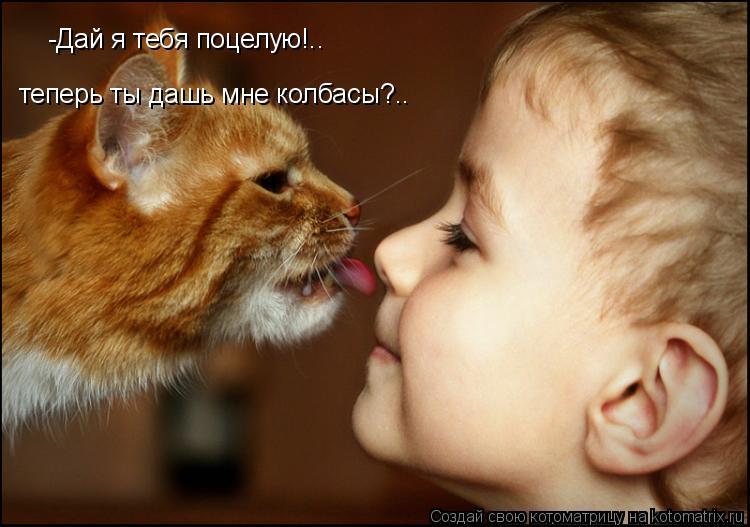 Котоматрица: -Дай я тебя поцелую!.. теперь ты дашь мне колбасы?..