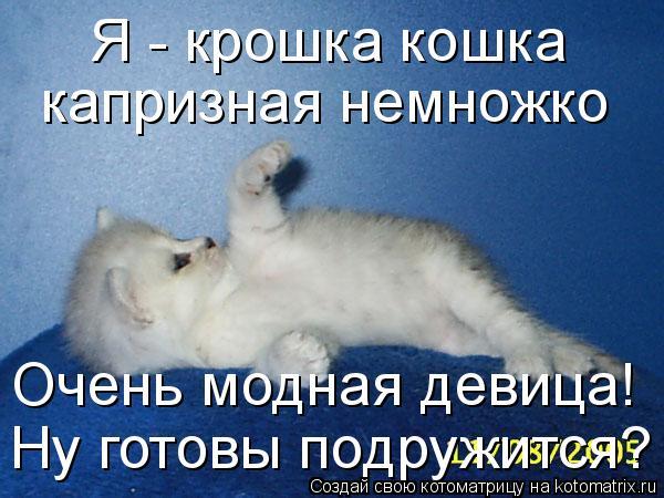 http://kotomatrix.ru/images/lolz/2010/10/26/717315.jpg