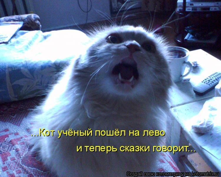 Котоматрица: ...Кот учёный пошёл на лево и теперь сказки говорит...
