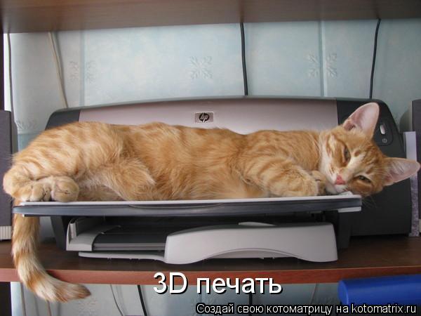 Котоматрица: 3D печать