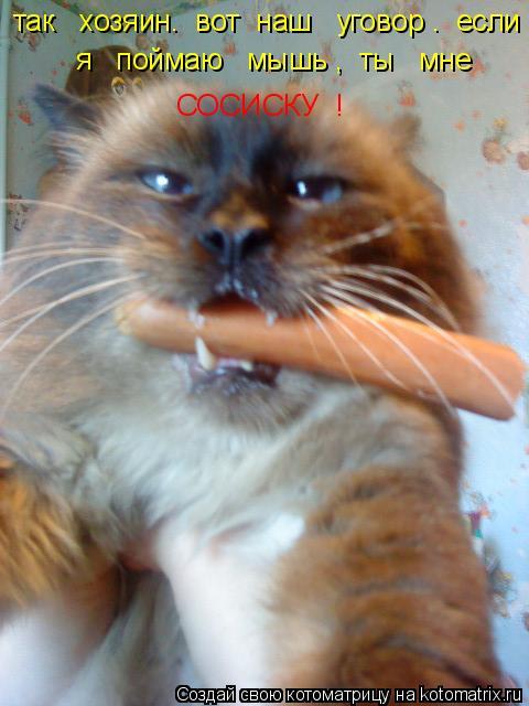 Котоматрица: так   хозяин.  вот  наш   уговор .  если     я   поймаю   мышь ,  ты   мне         СОСИСКУ  !
