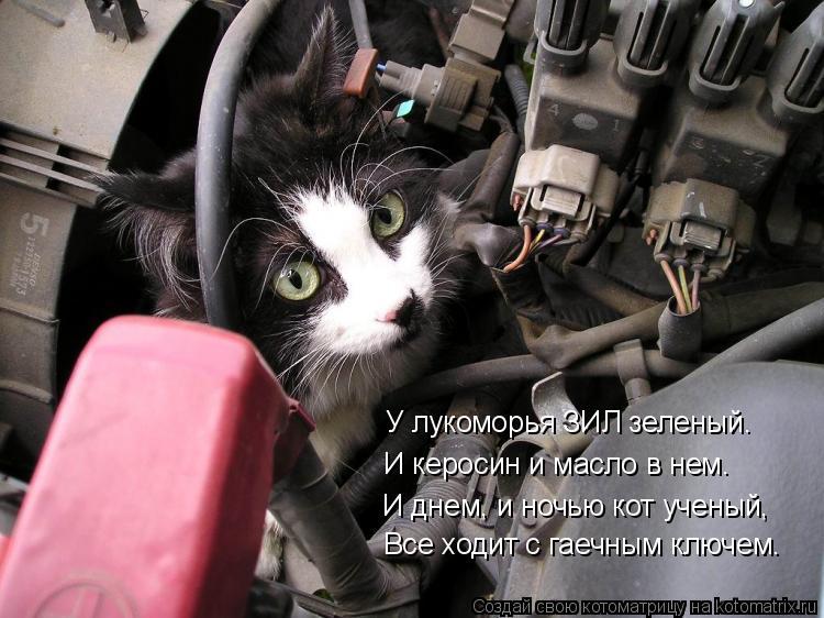Котоматрица: У лукоморья ЗИЛ зеленый. И керосин и масло в нем. И днем, и ночью кот ученый, Все ходит с гаечным ключем.