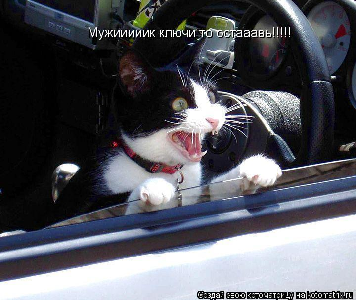 Котоматрица: Мужииииик ключи то остааавь!!!!!