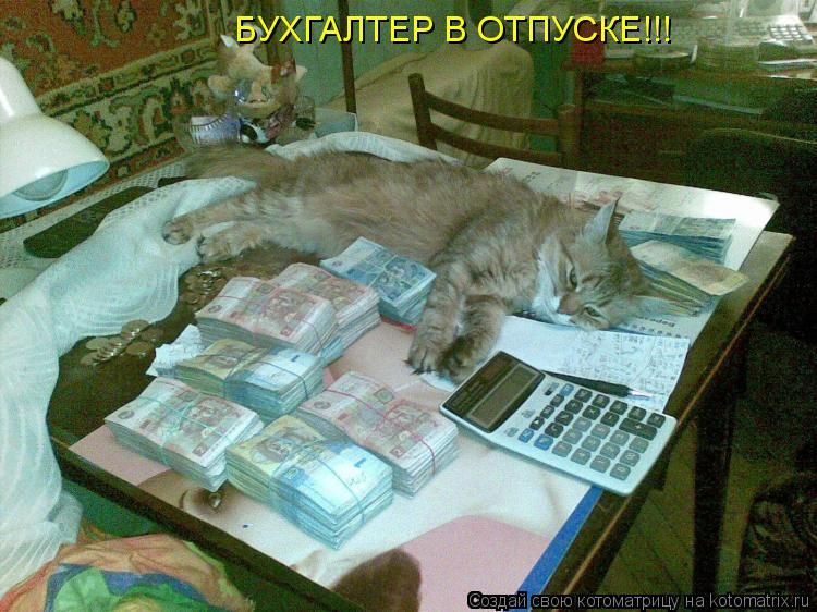 Котоматрица: БУХГАЛТЕР В ОТПУСКЕ!!!