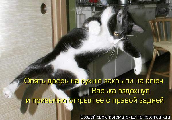 Котоматрица: Опять дверь на кухню закрыли на ключ Васька вздохнул и привычно открыл её с правой задней.