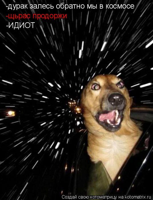 Котоматрица: -дурак залесь обратно мы в космосе  -щьрас продоржи  -ИДИОТ