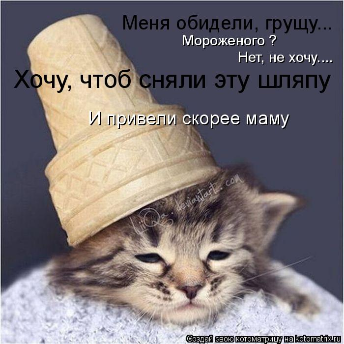 Котоматрица: Меня обидели, грущу... Мороженого ? Нет, не хочу.... Хочу, чтоб сняли эту шляпу И привели скорее маму