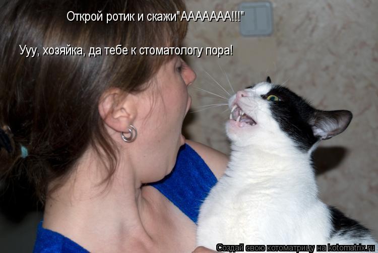 """Котоматрица: Открой ротик и скажи""""ААААААА!!!"""" Ууу, хозяйка, да тебе к стоматологу пора!"""
