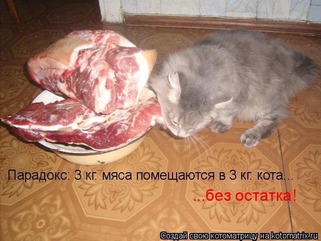 Котоматрица: ...без остатка! Парадокс: 3 кг. мяса помещаются в 3 кг. кота...