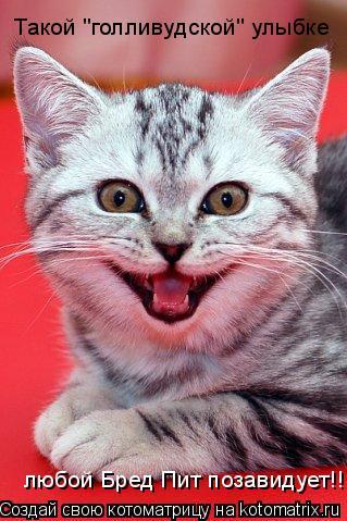 """Котоматрица: Такой """"голливудской"""" улыбке  любой Бред Пит позавидует!!!"""