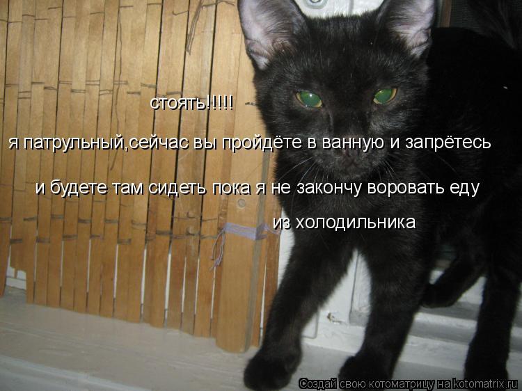 Котоматрица: стоять!!!!! я патрульный,сейчас вы пройдёте в ванную и запрётесь и будете там сидеть пока я не закончу воровать еду из холодильника