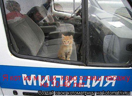 Котоматрица: Я кот из міліциї каво хочиш пасажу  на 10-40 лет