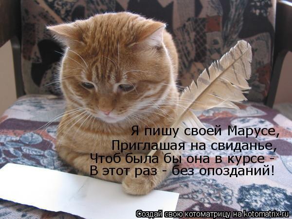 Котоматрица: Я пишу своей Марусе, Приглашая на свиданье, Чтоб была бы она в курсе - В этот раз - без опозданий!