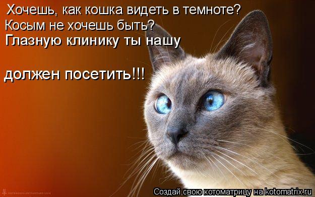 Котоматрица: Хочешь, как кошка видеть в темноте? Косым не хочешь быть? Глазную клинику ты нашу должен посетить!!!