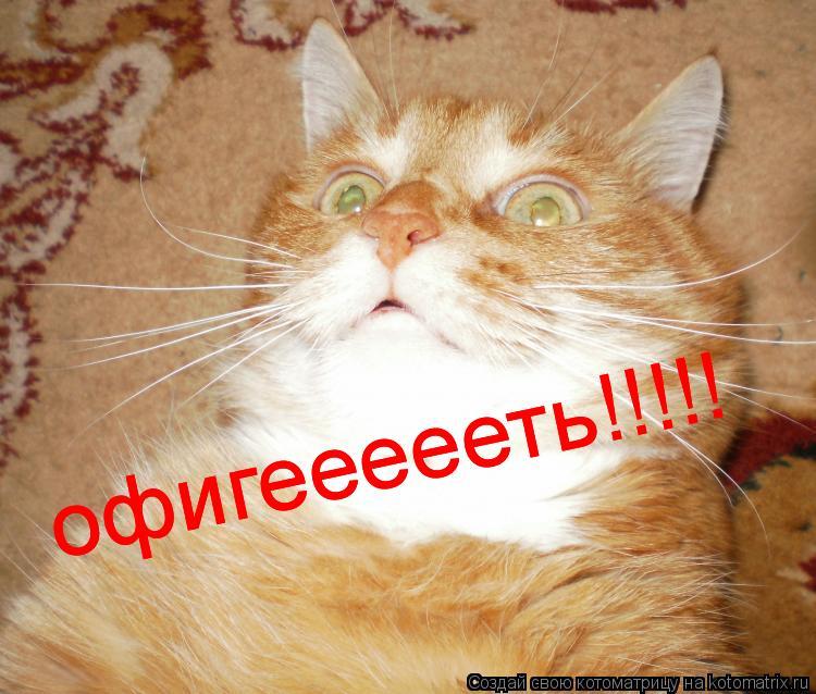 Котоматрица: офигеееееть!!!!! офигеееееть!!!!! офигеееееть!!!!!