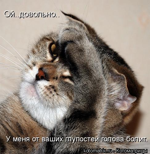 Котоматрица: Ой..довольно.. У меня от ваших глупостей голова болит.