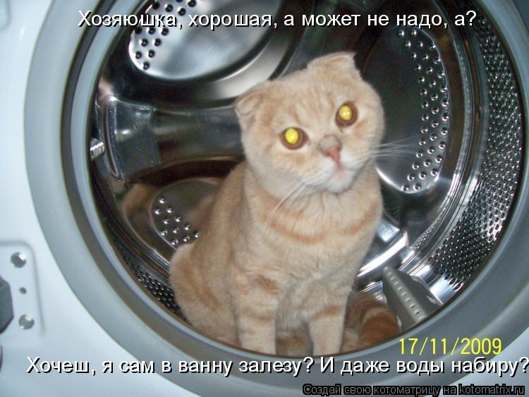 Котоматрица: Хозяюшка, хорошая, а может не надо, а? Хочеш, я сам в ванну залезу? И даже воды набиру?