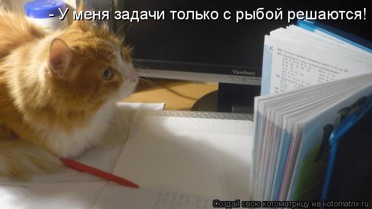 Котоматрица: - У меня задачи только с рыбой решаются!