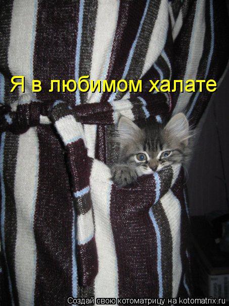 Котоматрица: Я в любимом халате