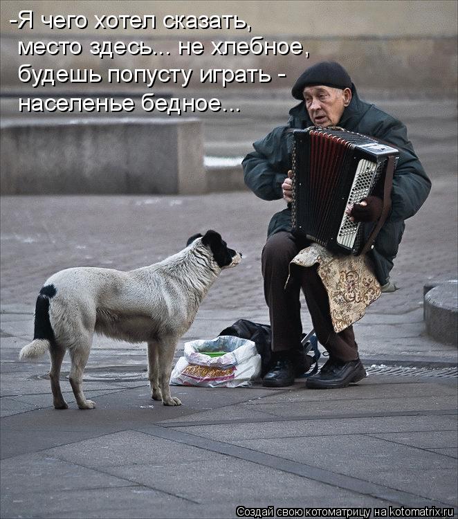 Котоматрица: -Я чего хотел сказать, место здесь... не хлебное, будешь попусту играть - населенье бедное...
