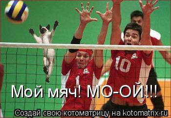 Котоматрица: Мой мяч! МО-ОЙ!!!