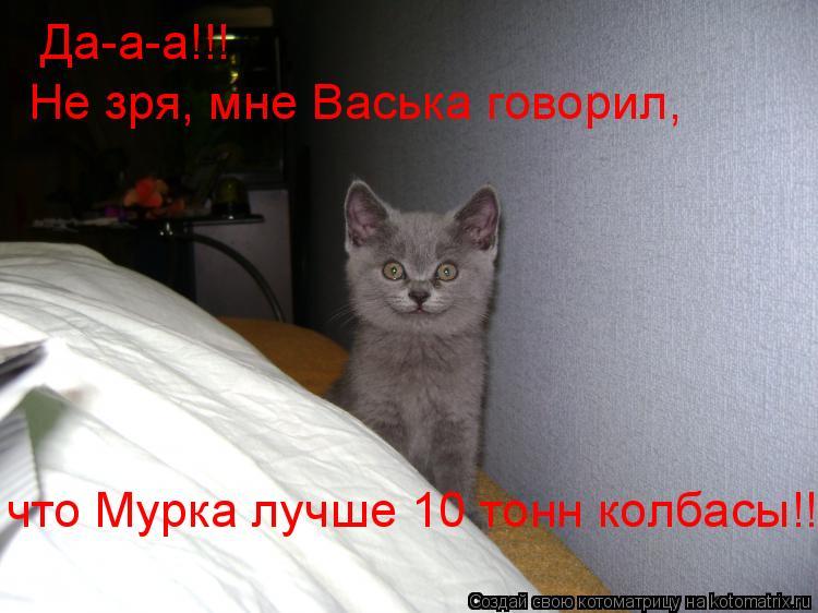 Котоматрица: Да-а-а!!!  Не зря, мне Васька говорил, что Мурка лучше 10 тонн колбасы!!!