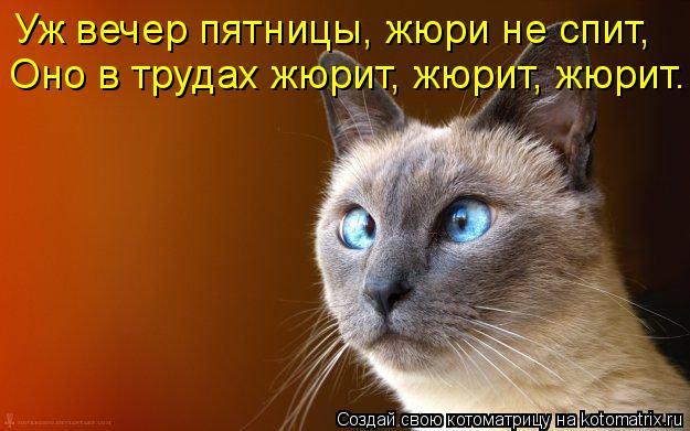Котоматрица: Уж вечер пятницы, жюри не спит, Оно в трудах жюрит, жюрит, жюрит...