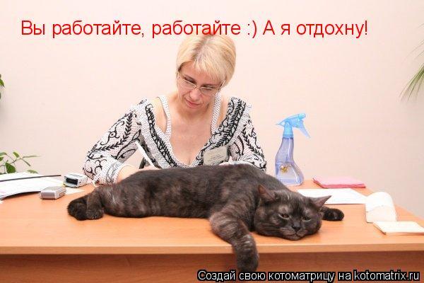Котоматрица: Вы работайте, работайте :) А я отдохну!