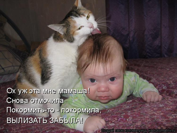 Котоматрица: Ох уж эта мне мамаша! Снова отмочила Покормить-то - покормила, ВЫЛИЗАТЬ ЗАБЫЛА!