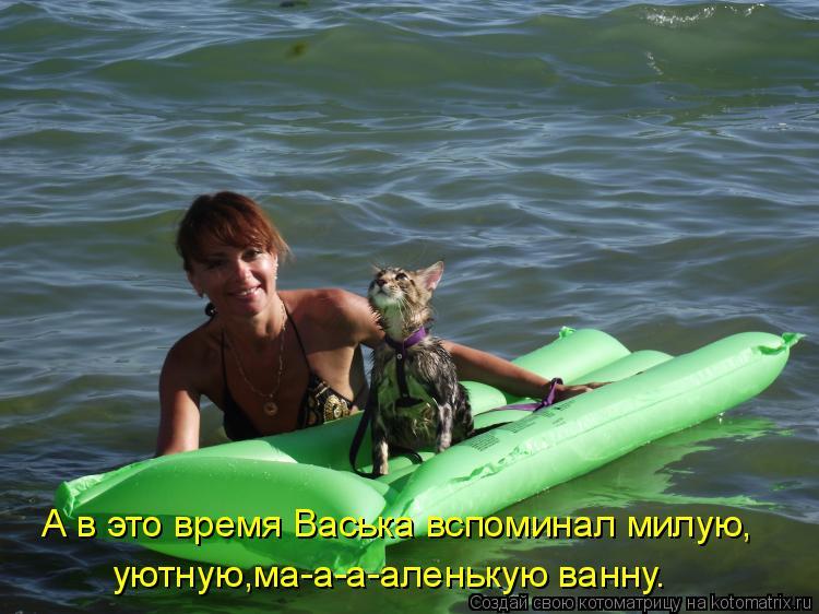Котоматрица: А в это время Васька вспоминал милую, уютную,ма-а-а-аленькую ванну.