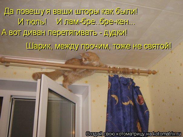 Котоматрица: Да повешу я ваши шторы как были! И тюль! И лам-бре..бре-кен... А вот диван перетягивать - дудки! Шарик, между прочим, тоже не святой!
