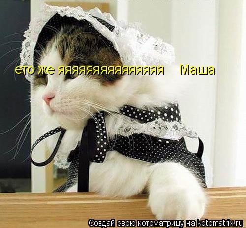 Котоматрица: ето же яяяяяяяяяяяяяяя    Маша