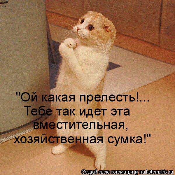 http://kotomatrix.ru/images/lolz/2010/10/30/721766.jpg