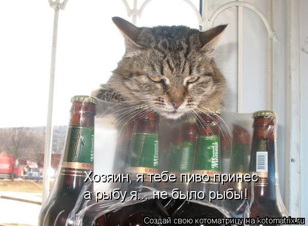 Котоматрица: Хозяин, я тебе пиво принес а рыбу я... не было рыбы!